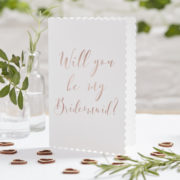 BB-262_-_Will_You_Be_My_Bridesmaid_Card[1]