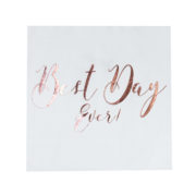 BB-265_Best_Day_Ever_Napkin_-_Cut_Out[1]