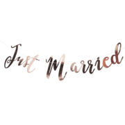 BB-276_Just_Married_Backdrop_-_Cut_Out[1]