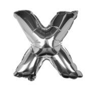 PM-310-SILVER_X-Cut_Out[1]