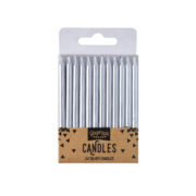 PM-990_Silver_Candles_Cutout[1]