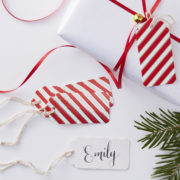 RG-318_Candy_Cane_Stiped_Gift_Tags[1]